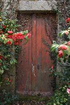 La vieille porte