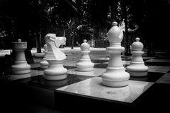 La vita è una partita a scacchi!!!!!!!!!