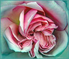 la vraie  beauté vient du coeur ....