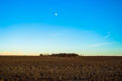 La zona arida