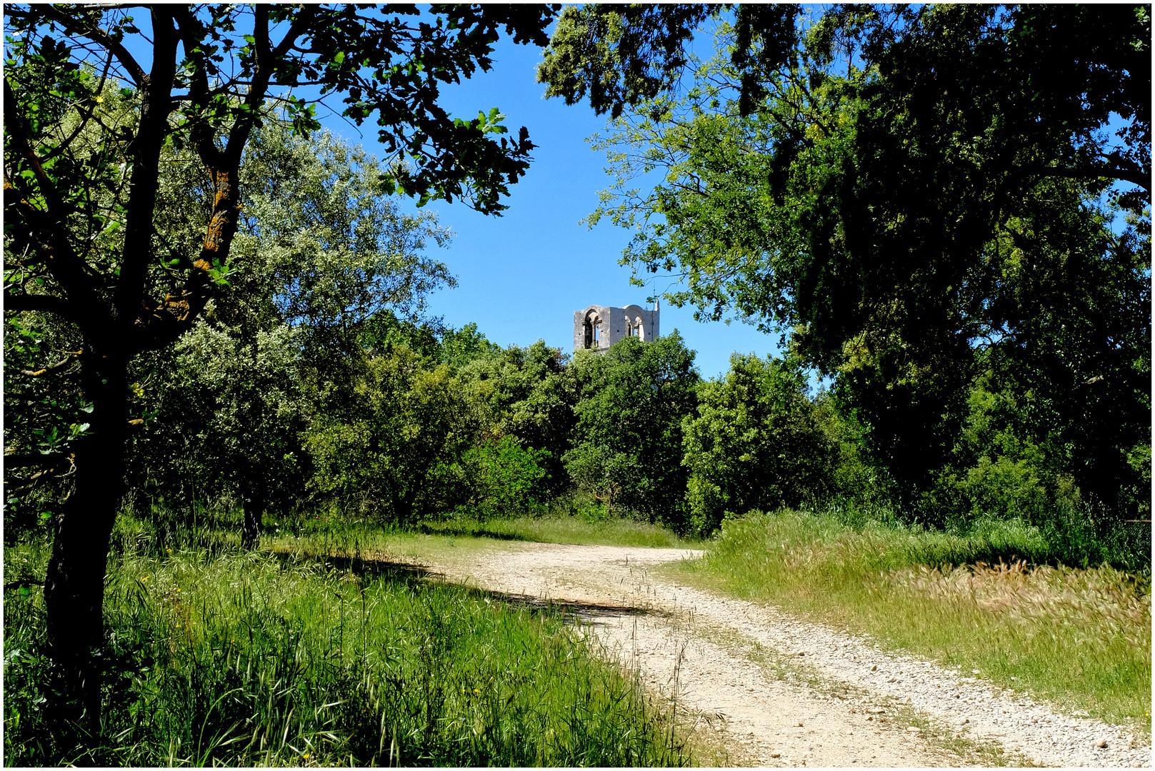 L'abbaye aux champs (2)