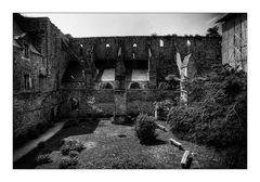 [ l'Abbaye de Beauport ]