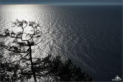 Lac Baïkal - Ile d'Olkhon 05
