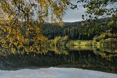 Lac de Longemer ...