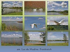 Lac de Madine-3-