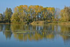 Lac de Madine