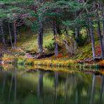 Lac de Thorenc et ses reflets