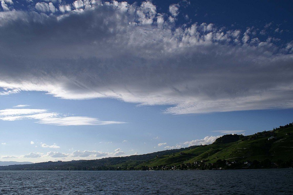 Lac Leman / Genfersee; Lavaux