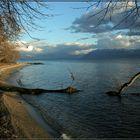 Lac Leman II