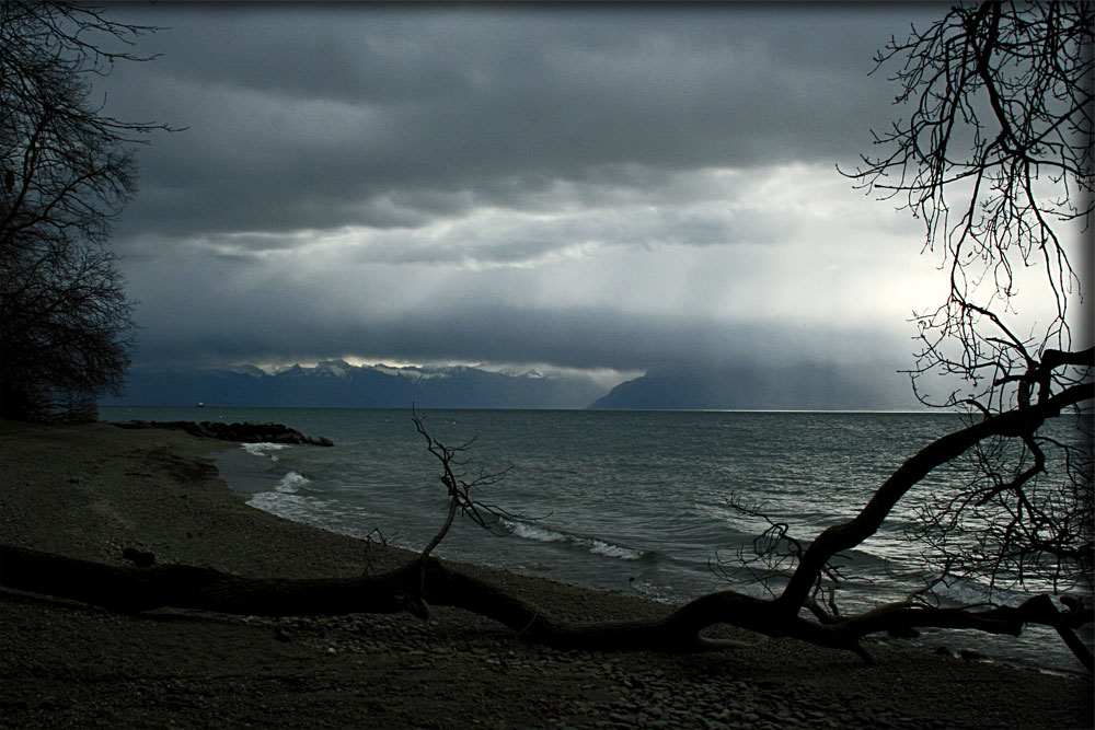 Lac Leman III