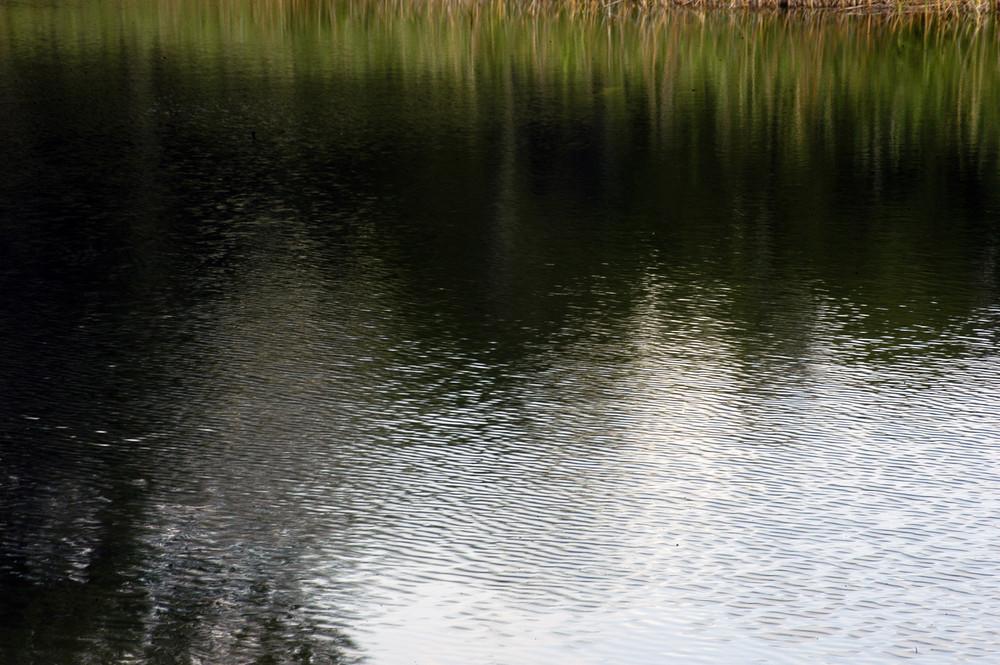 lac noir 3