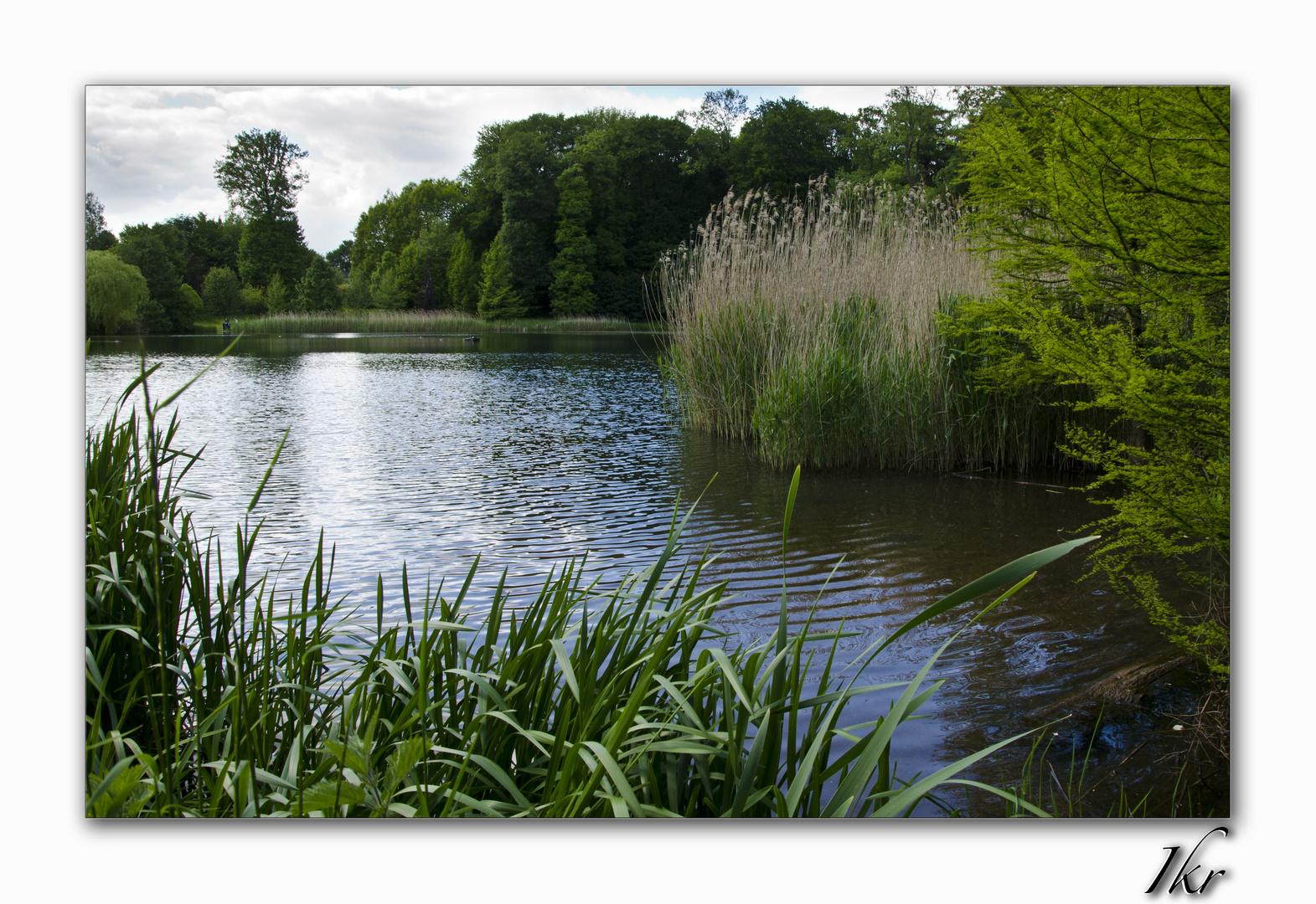Lac - Parc de Mariemont - Belgium