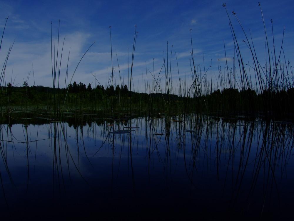 lac petit malpas