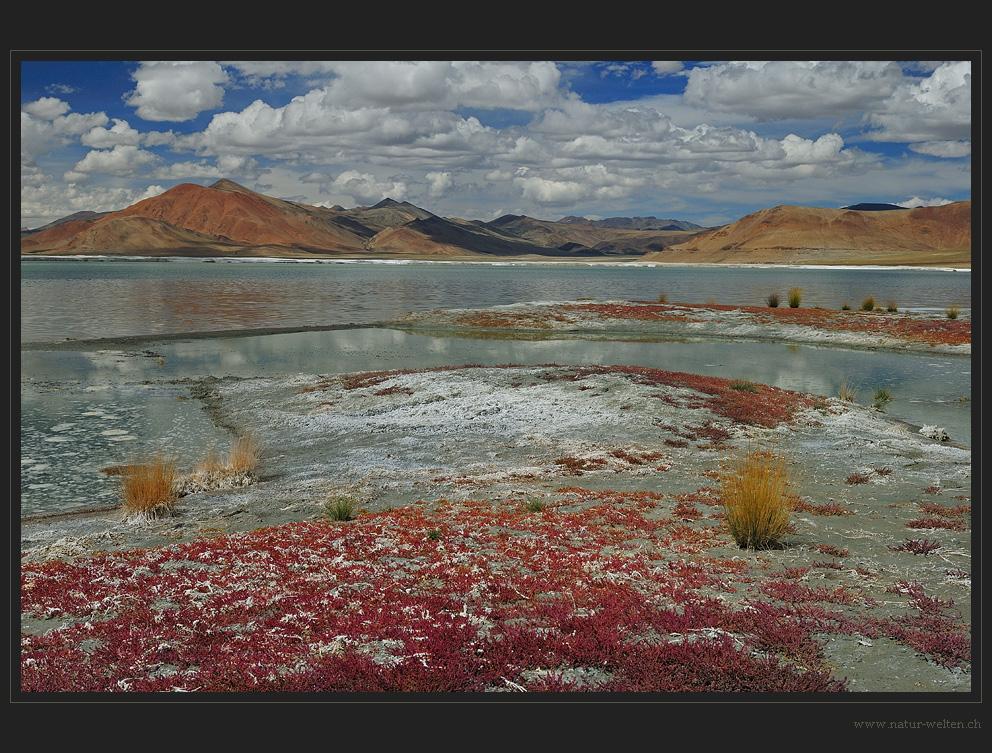 Ladakh oder Atacama?
