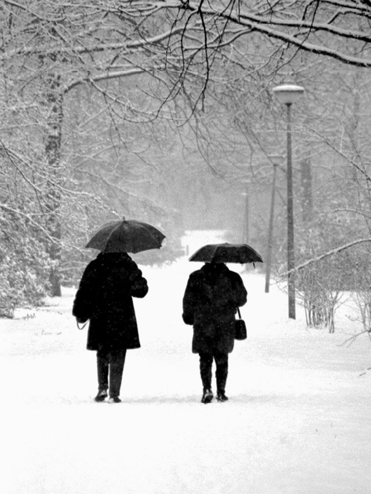 Ladies in the snow by sabusa