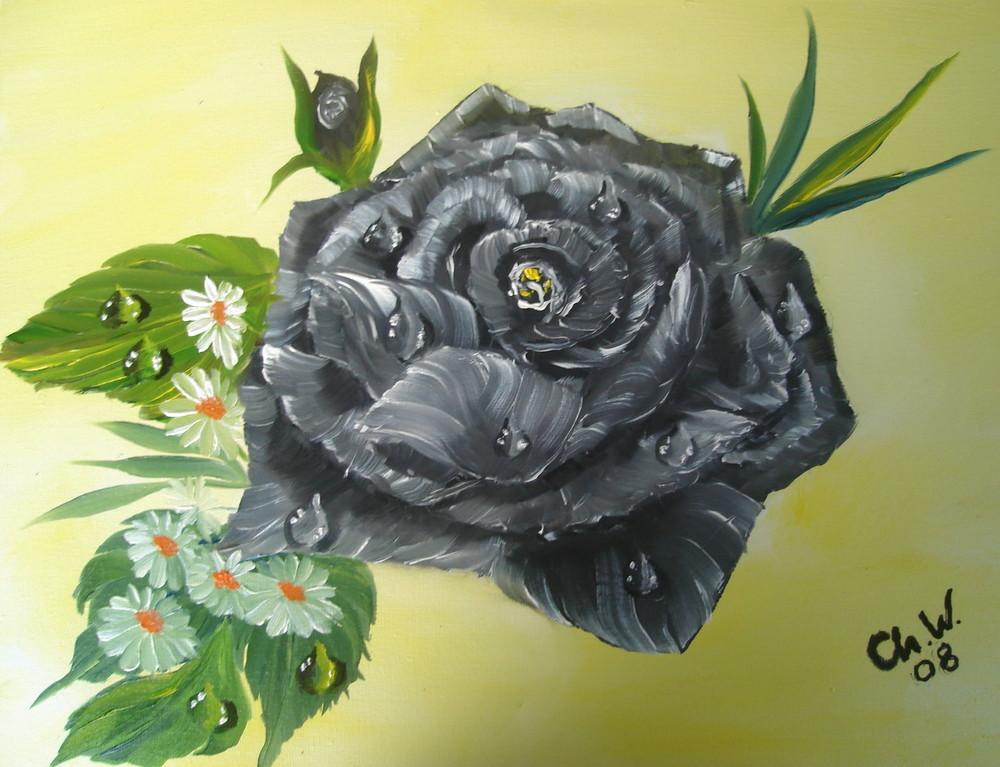 Lady Bathory Rose