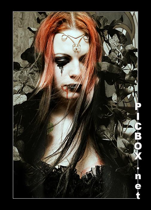 Lady Bloodline