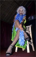 ladymen & gays 02