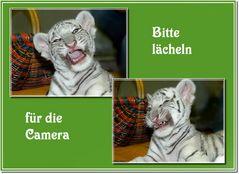 Lächeln für die Camera