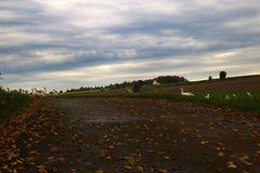 ländliche Landschaft im Oktober