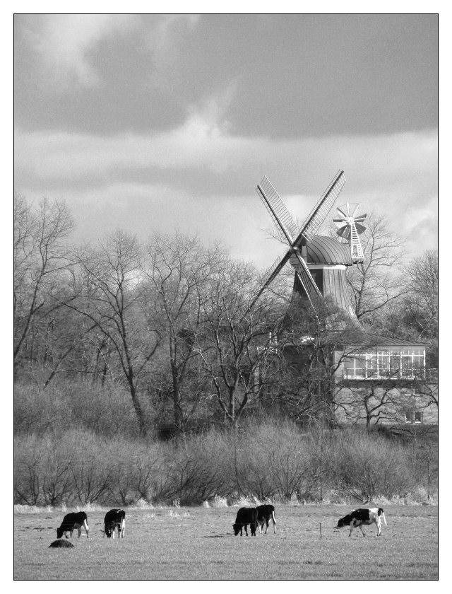 Ländliche Mühle
