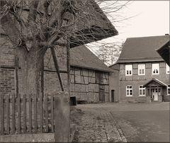 Ländlicher Hinterhof 5
