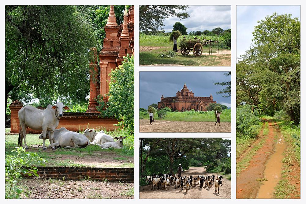 Ländliches Bagan