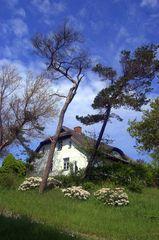 Ländliches Haus in Kloster