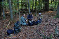 Lagebesprechung im Wald der Buchenschleimrüblinge