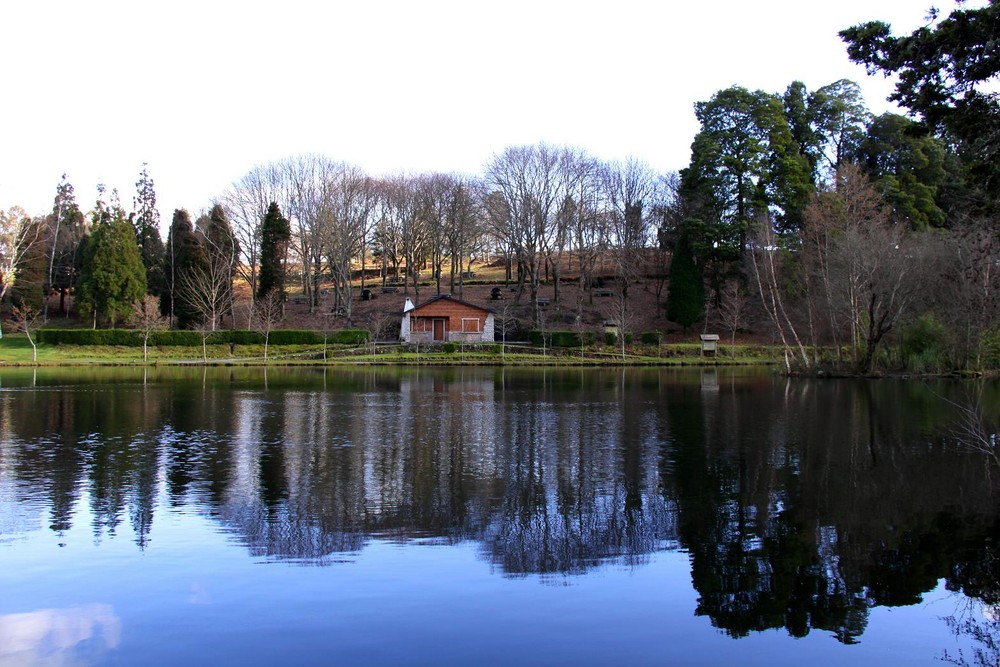 Lago Castiñeiras