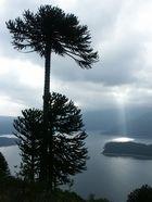 Lago Conguillo