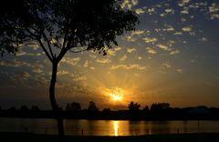 Lago de Tamarici