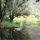 lago di Ganna - Varese