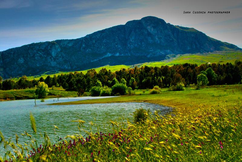 Lago di piana degli albanesi foto immagini paesaggi for Disegni di laghi