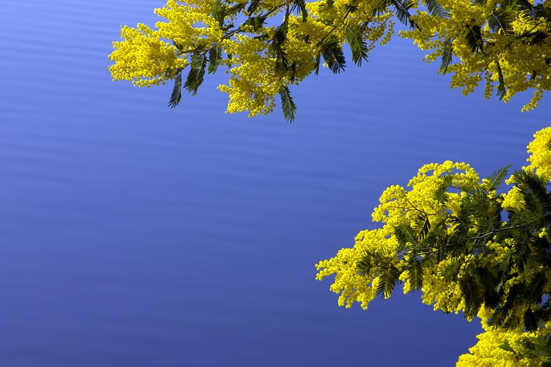 Lago di San Cipriano 4