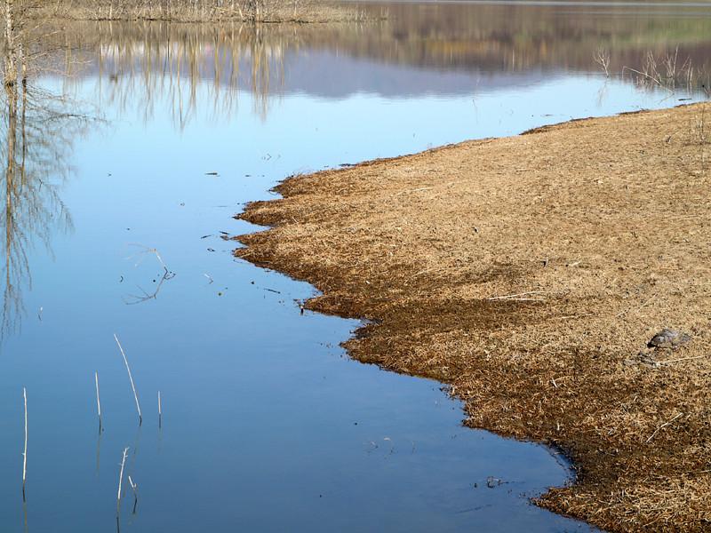 Lago di San Cipriano - Cavriglia -