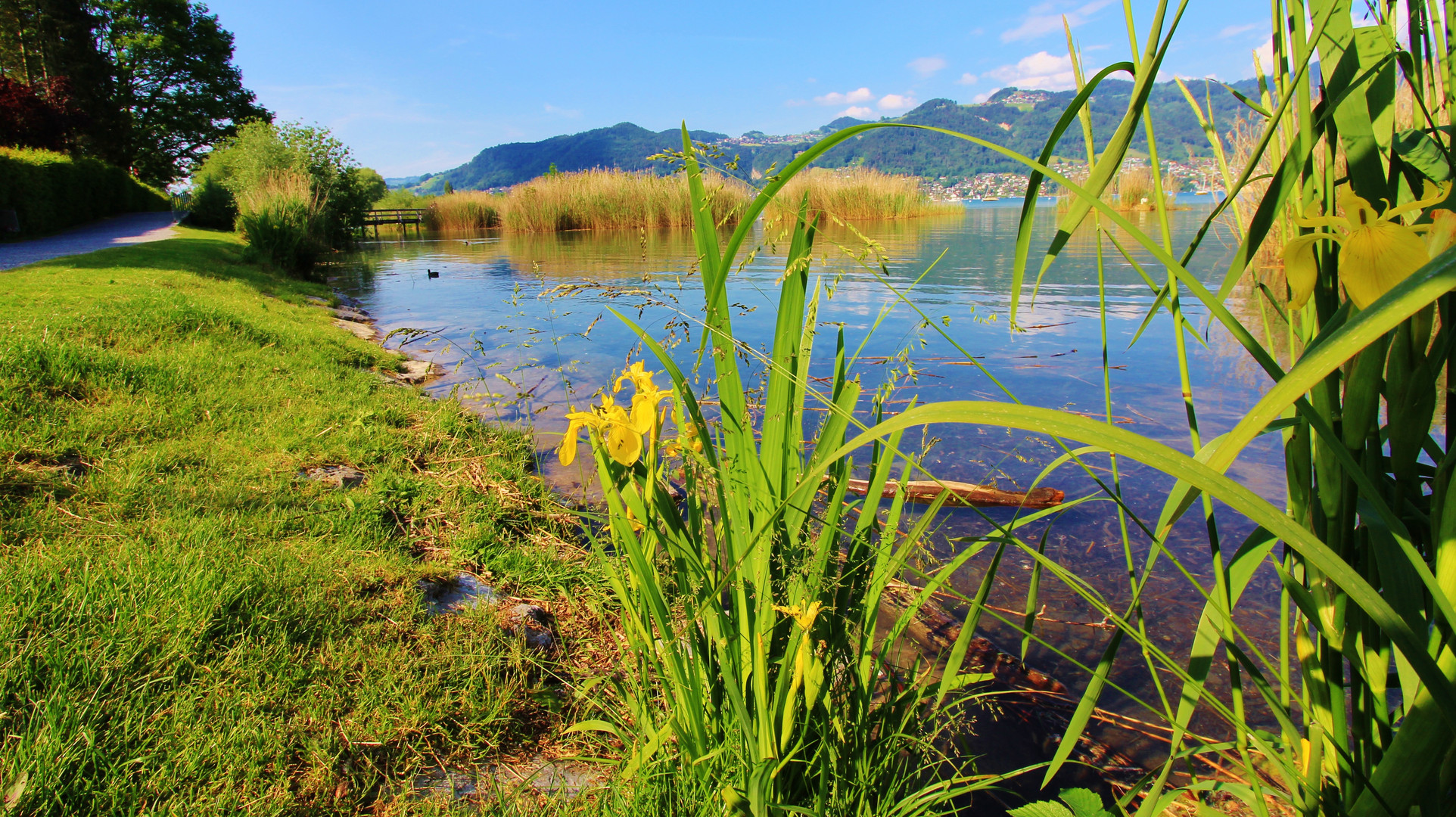 Lago di Thun a Gwatt