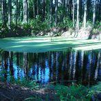 Lago Fantástico I