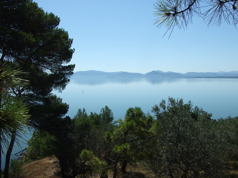 Lago Trasimeno #1