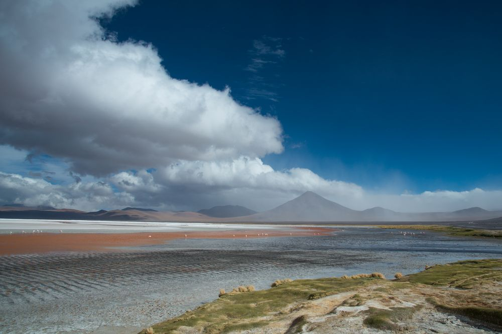 Bolivien Laguna Colorada