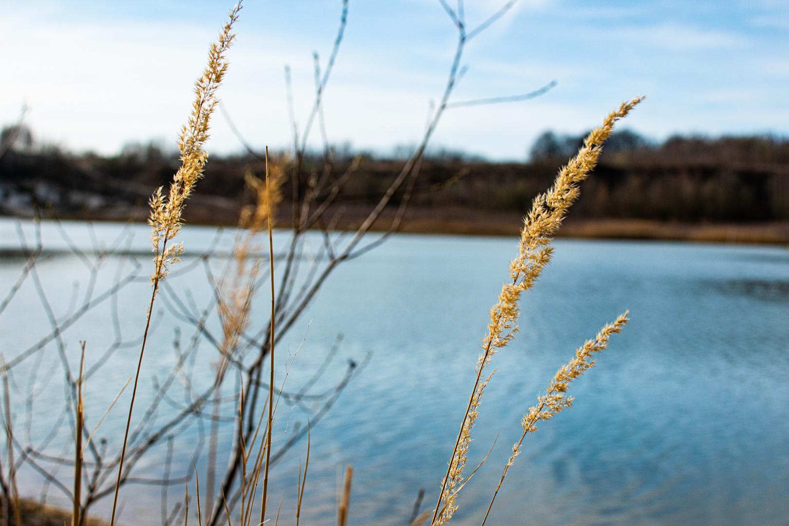 Lagune 3