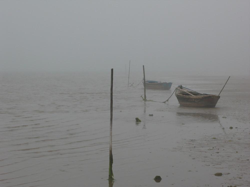 Lagune im Nebel
