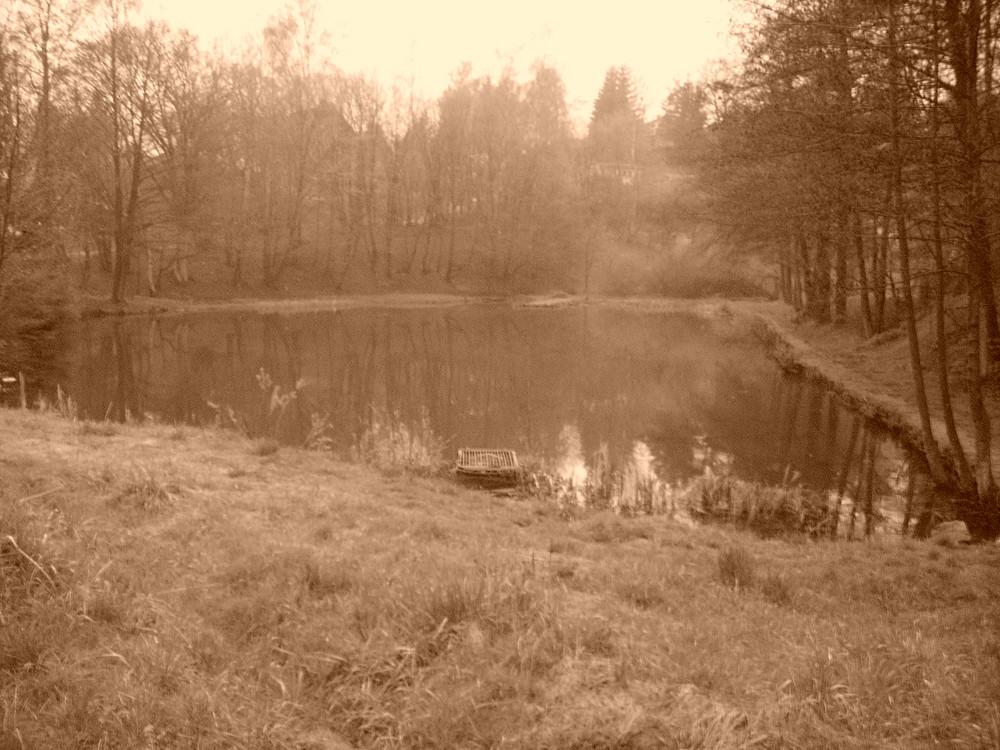 lake and fog