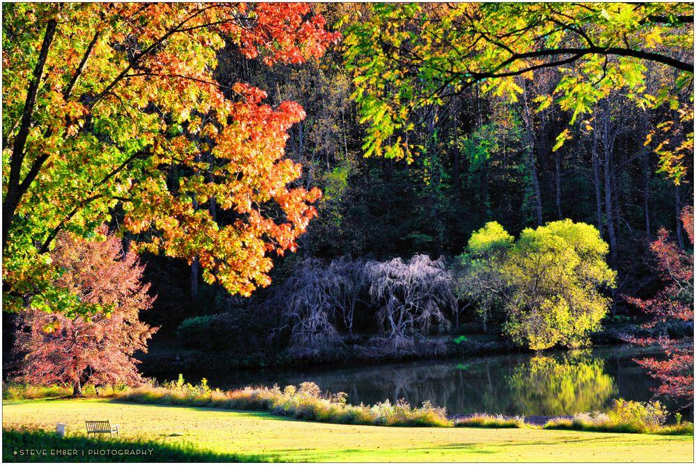Lake Caroline, Early Autumn