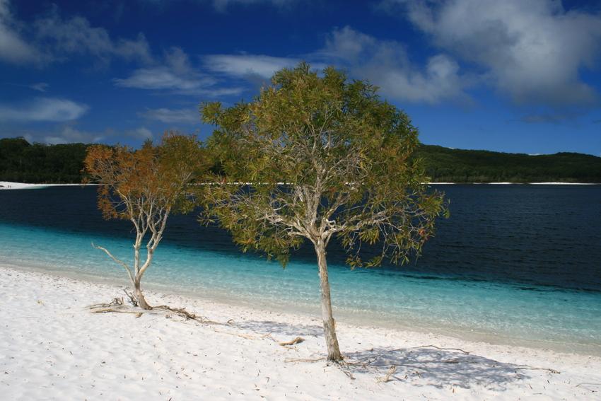 Lake McKenzie Variante I