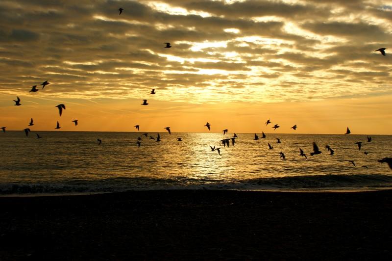 L'alba del mare d'inverno...