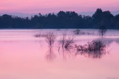 l'alba si veste di rosa