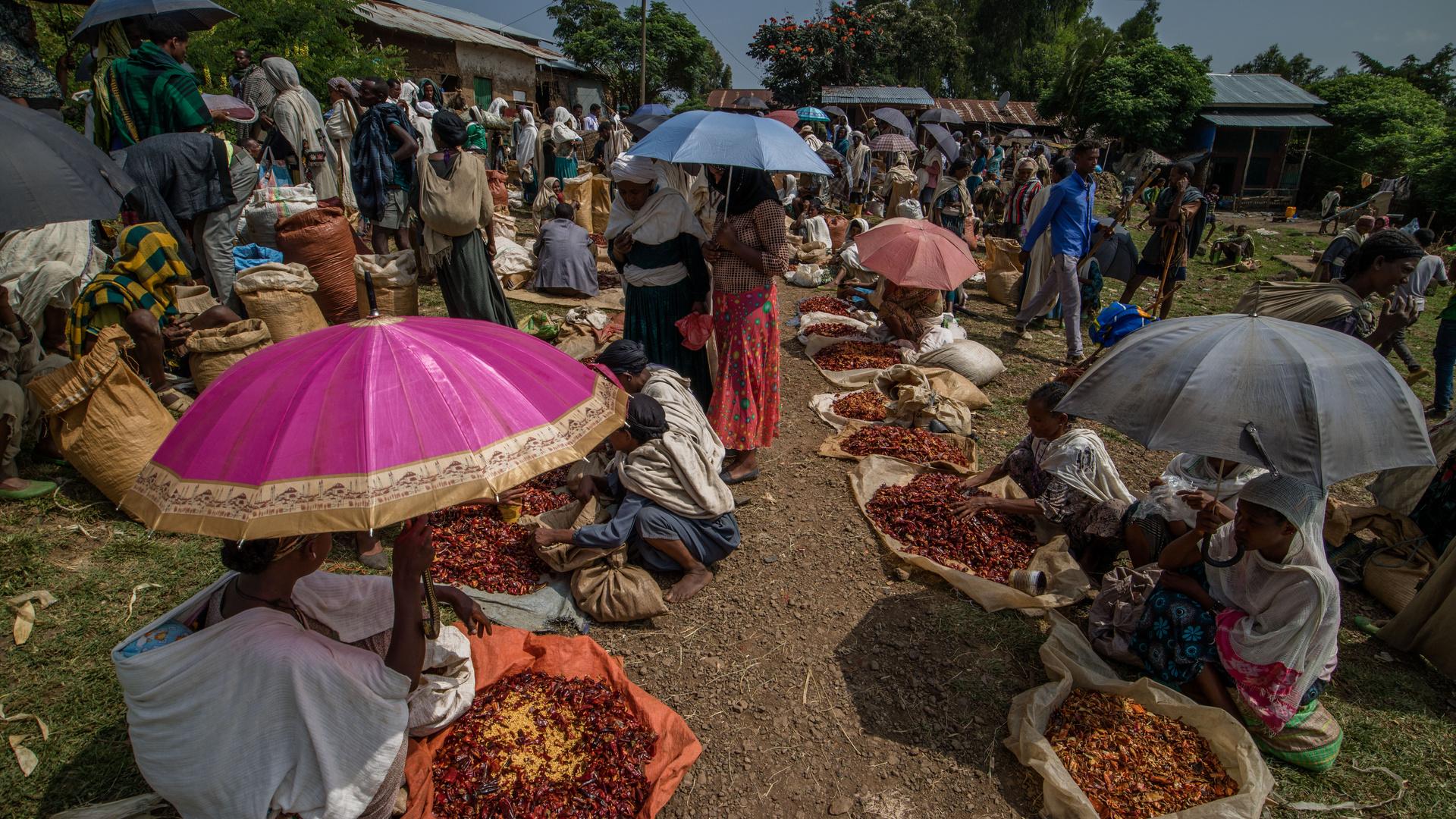 L'allée des piments sur un marché de campagne.