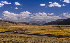 Lamar Valley, Lamar River, Wyoming, USA