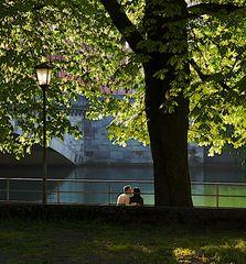 L'amore nel parco